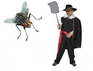 preparat na muchy Muszak Ulotka 1 str.ost.wersja trutka na muchy mrówki karaluchy